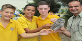 Students with Featherdale Tawny Frogmouth
